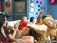 Танец черного медведя и его белого приятеля